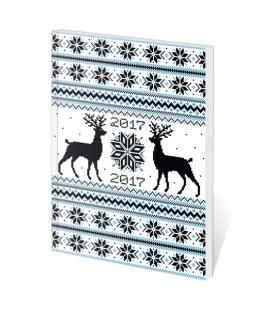 Pocket Diary Poketto - Winter 2017