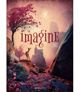 Nástěnný kalendář Představy - Caras Ionut / Imagine – Caras Ionut 2017