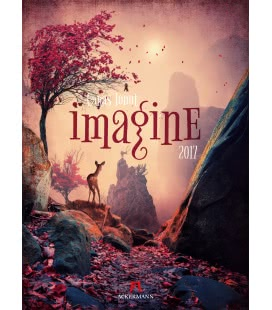 Wandkalender Imagine – Caras Ionut 2017