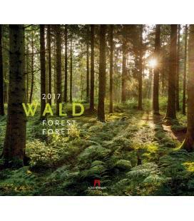 Nástěnný kalendář Les / Wald 2017