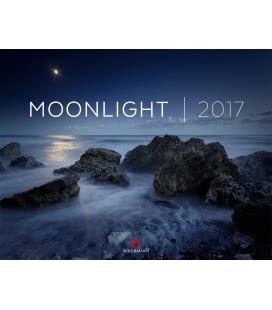 Nástěnný kalendář Měsíční svit / Moonlight 2017