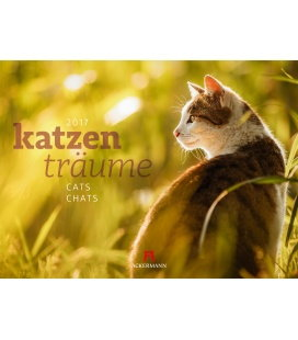 Nástěnný kalendář Kočičí sny / Katzenträume 2017