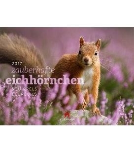 Nástěnný kalendář Veverky / Eichhörnchen 2017