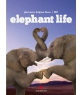 Nástěnný kalendář Sloní život / Elephant Life 2017