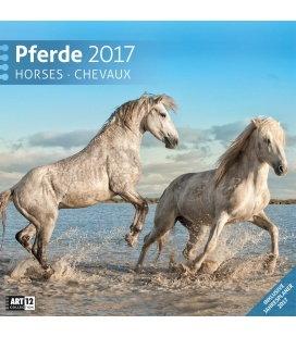 Wall calendar Pferde 30 x 30 cm 2017