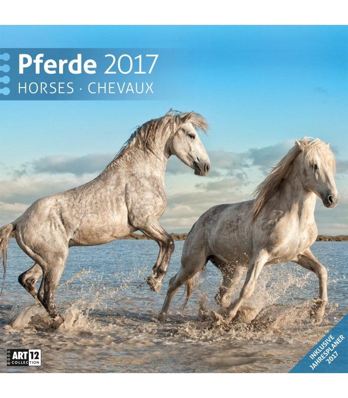 ... > Ausländische Kalender 2017 > Wandkalender Pferde 30 x 30 cm 2017