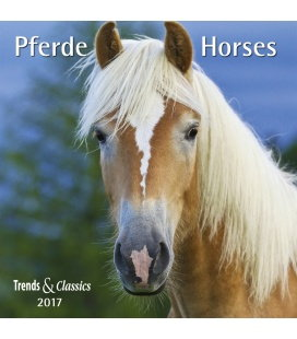 Wall calendar Pferde T&C 2017