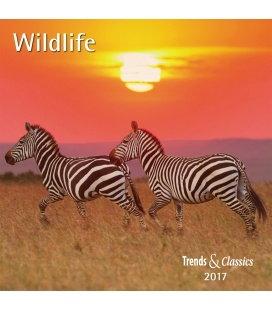 Wall calendar Wildlife T&C 2017
