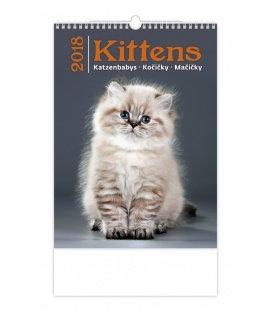 Nástěnný kalendář Kočičky - Kittens 2018