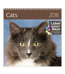 Nástěnný kalendář Cats 2018