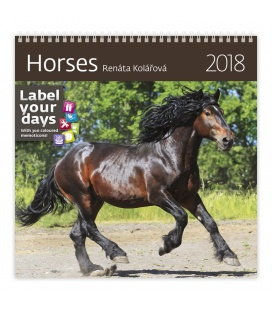Nástěnný kalendář Horses 2018
