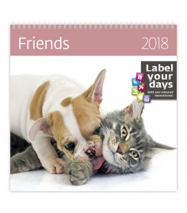Nástěnný kalendář Friends 2018