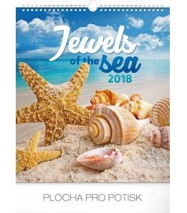 Nástěnný kalendář Klenoty moře 2018