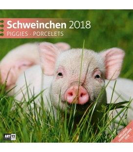 Nástěnný kalendář Prasata / Schweinchen 30x30 2018