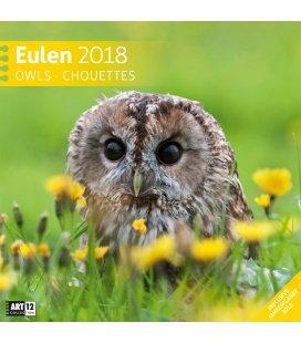 Nástěnný kalendář Sovy / Eulen 30x30 2018