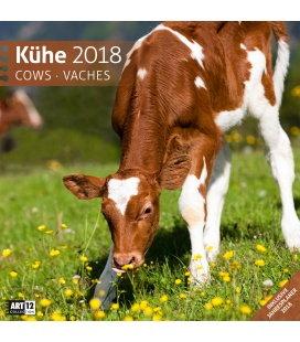 Nástěnný kalendář Krávy / Kühe 30x30 2018