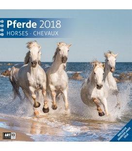 Nástěnný kalendář Koně / Pferde 30x30 2018