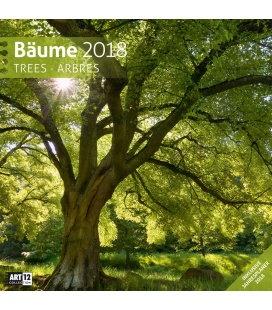 Nástěnný kalendář Stromy / Bäume 30x30 2018