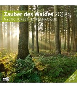 Nástěnný kalendář Kouzlo lesa / Zauber des Waldes 30x30 2018