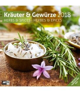 Nástěnný kalendář Bylinky a koření / Kräuter und Gewürze 30x30 2018