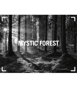 Nástěnný kalendář Les / Mystic Forest 2018