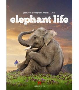 Nástěnný kalendář Sloní život / Elephant Life 2018
