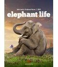 Wall calendar Elephant Life 2018