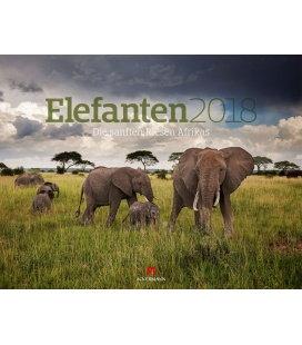 Nástěnný kalendář Sloni / Elefanten 2018