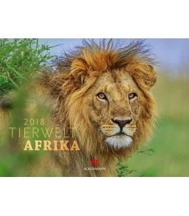 Wandkalender Tierwelt Afrika 2018