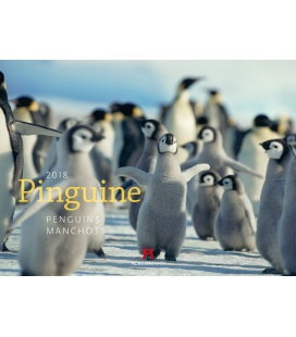 Nástěnný kalendář Tučňáci / Pinguine 2018
