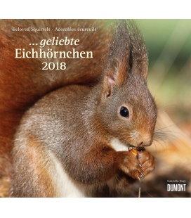 Nástěnný kalendář Veverky / ...geliebte Eichhörnchen 2018