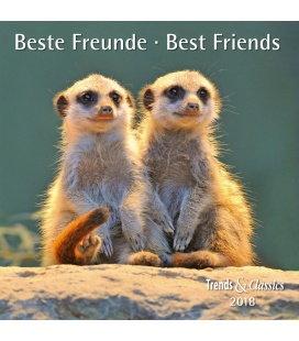 Nástěnný kalendář Nejlepší přátelé / Beste Freunde T&C 2018