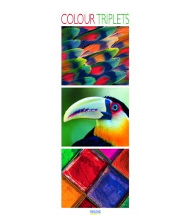 Nástěnný kalendář Barvy / Colour Triplets 2018