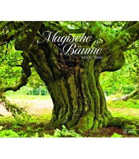 Nástěnný kalendář Magické stromy / Magische Bäume 2018