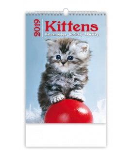Nástěnný kalendář Kittens/Katzenbabys/Kočičky/Mačičky 2019