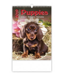 Nástěnný kalendář Puppies/Welpen/Štěňátka/Šteniatka 2019