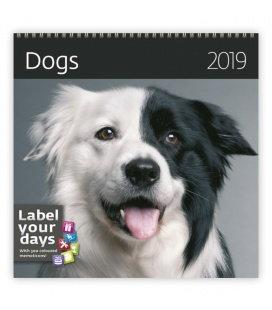 Nástěnný kalendář Dogs 2019