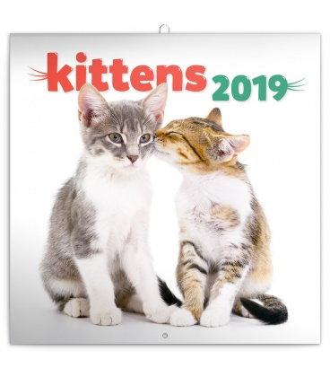 Nástěnný kalendář Koťata 2019