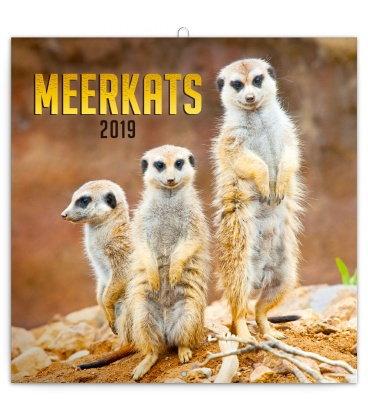 Nástěnný kalendář Surikaty 2019