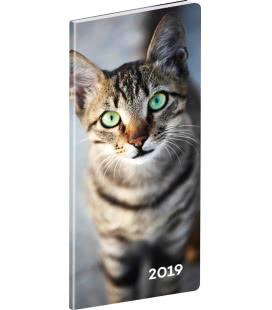 Diář kapesní plánovací měsíční Kočky 2019