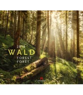 Nástěnný kalendář Les / Wald 2019