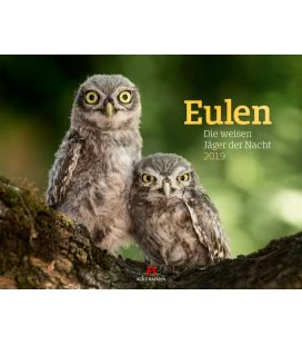Nástěnný kalendář Sovy / Eulen - weise Jäger 2019