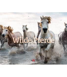 Nástěnný kalendář Divocí koně / Wilde Pferde 2019