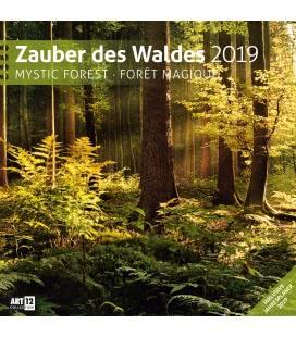 Wandkalender Zauber des Waldes 2019