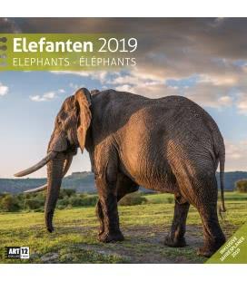 Wall calendar Elefanten 2019