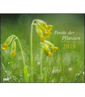 Nástěnný kalendář Poezie rostlin / Poesie der Pflanzen 2019