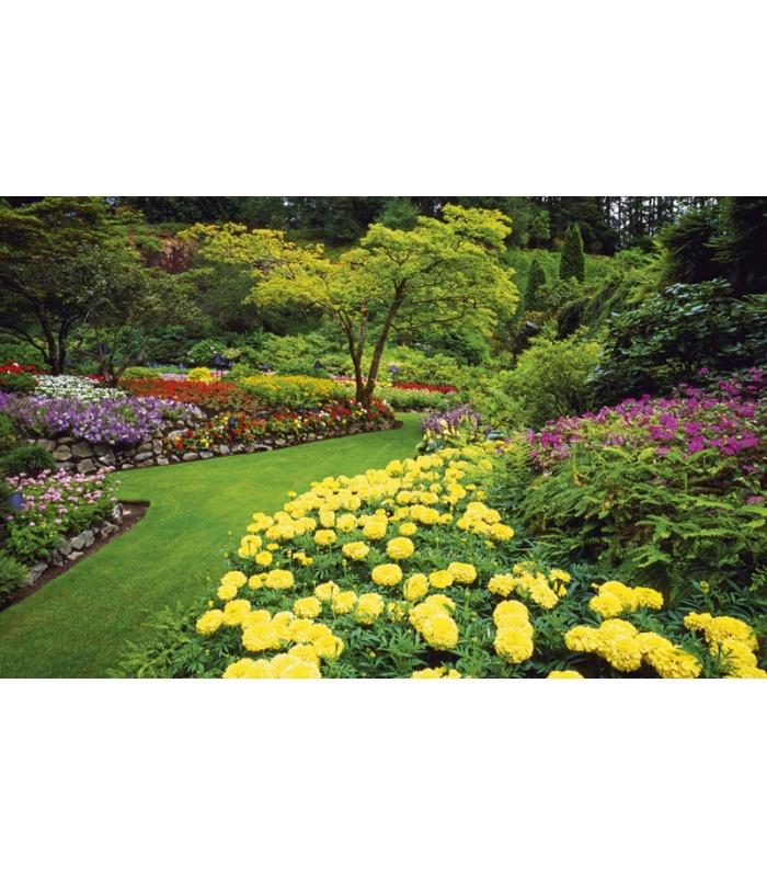 Wall calendar gardens 2016 for Gardening wall planner