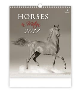 Wall calendar Horses in Motion 2017