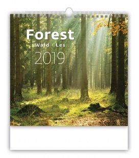 Nástěnný kalendář Forest/Wald/Les 2019