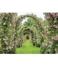 Wall calendar Rok na zahradě - vázanka 2019